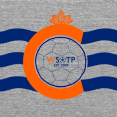 The very first shirt design I came up with for the WSOTP Shop paid homage to the city of Cincinnati's flag.